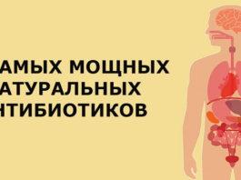 14 антибиотиков, которые есть в природе и которые защитят от 90% болезней