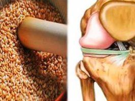 Эти семена восстановят сухожилия, снимут боли в коленях, укрепят иммунитет и избавят от лишнего веса!