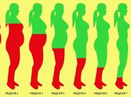Как растопить лишний жир за 8 недель: стабильный результат без эффекта возврата веса