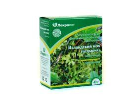 Купите в аптеке исландский мох — ценнейшее лекарство!