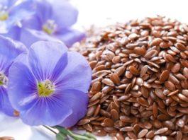 Вот что будет с организмом, если каждый день есть льняное семя!