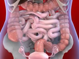 7 тревожных сигналов, что ваш организм зашлакован!