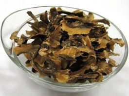Целебное лекарство. Перегородки грецких орехов: Рецепты лечения многих болезней
