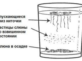 Домашний тест на наличие грибка кандида в организме и способы лечения