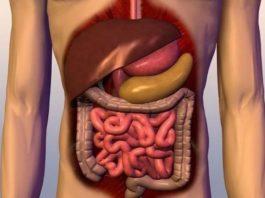 «Генеральную уборку организма» нужно начинать с пищеварительного тракта