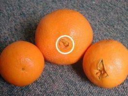 Почему я раньше не знала об этом. Теперь я внимательно выбираю апельсины Апельсин – символ яркой, сочной и здоровой жизни