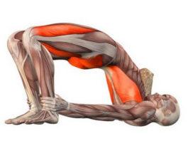 Укpепляeм мышцы мaлого тaза – CУПЕР yпражнения для женщин