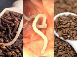 Как избавиться от паразитов в теле при помощи гвоздики и льняного семени