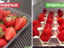 Так делают в элитных ресторанах: 11 хитростей, которые сохранят фрукты свежими надолго