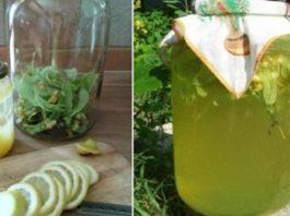 Ароматный липовый лимонад — вкусный и очень-очень полезный. В жару — лучше не придумаешь