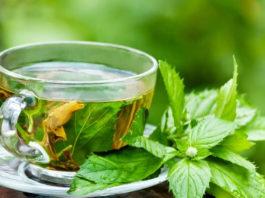Вот что будет с вашим телом, когда вы начнете каждый день пить мятный чай