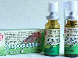 Знакомый Хлорофиллипт: 9 рецептов лечения болезней недорогим препаратом