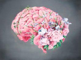 Три самых мощных рецепта для улучшения кровообращения в головном мозге